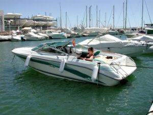 Sea Ray Sun Runner 220