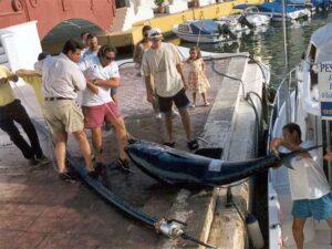 Puerto Banus Fishing Charter