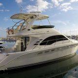 Sea Ray Boat Charter Puerto Banus