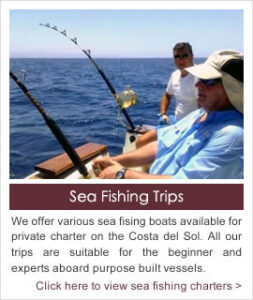 Fishing Trips on the Costa del Sol, Southern Spain