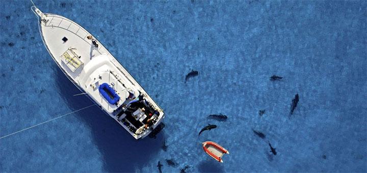 Costa del Sol Boat Gallery