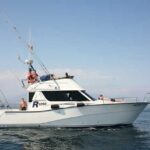 Rodman 1250R Motor Boat Excursions from Puerto Banus